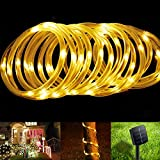 BlueFire Solar Rope Lights, 12M/39ft 100 LEDs Automatically Turn ON/OFF 2 Lighting Modes Decorative Lights for Outdoor/Indoor/Garden/Tree Christmas Wedding(Warm White)