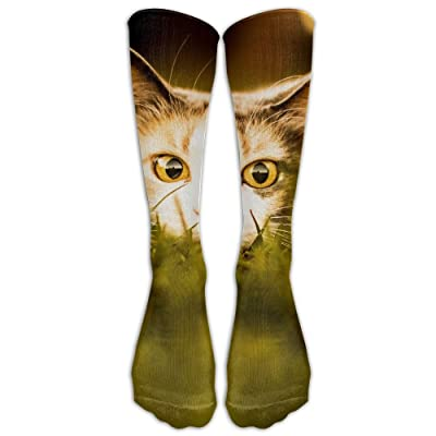 Yhj Over The Calf Tube Ankle Socks Knee Length Cat Look Wood Board Sitting Sock Sport Legs/Boots Knee High Mid-calf