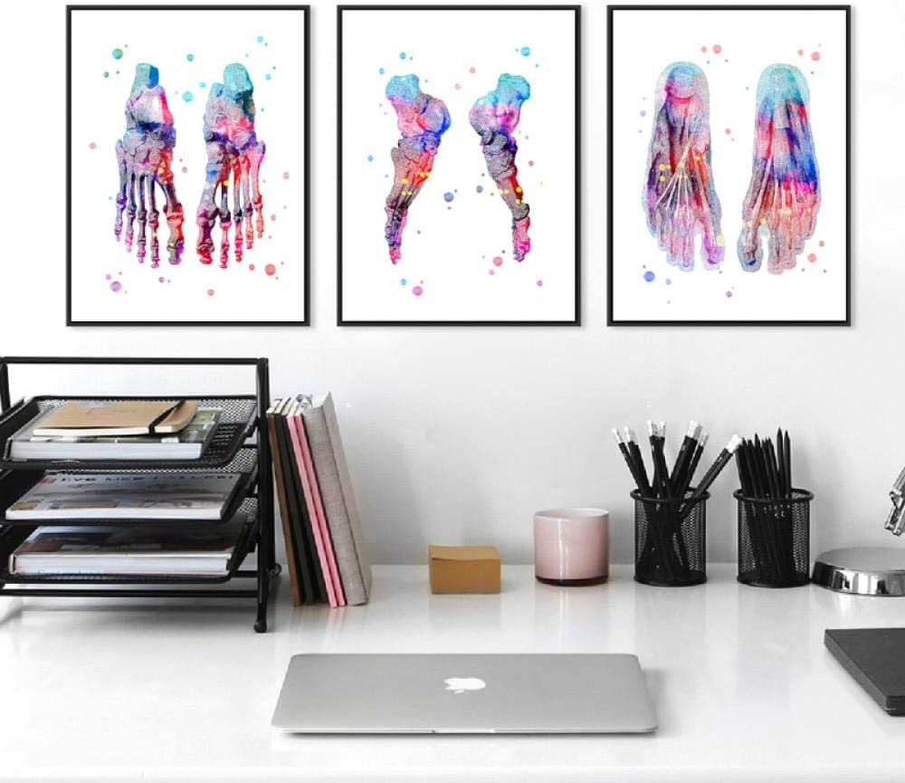 Conjunto de impresión de pies Esqueleto Acuarela Arte Lienzo Cartel Pintura Huesos de los pies Anatomía Medicina Impresión de pared Clínica Oficina médica Decoración Sin marco 50 * 70Cm * 3Pcs
