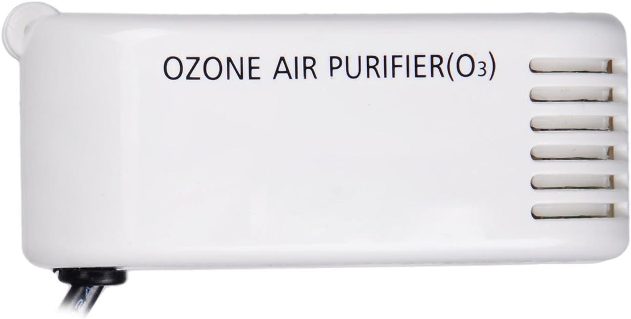 Amazon.es: STOGA OZ100 Mini 12 V Filtro de Aire bajo Consumo Coche ...