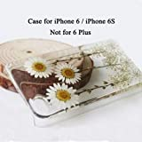 Rebbygena iPhone 6 Case iPhone 6S Case Custom Daisy Floral Real Pressed Flowers Phone Case for iPhone 6 Soft TPU Clear Phone Case for Apple Case