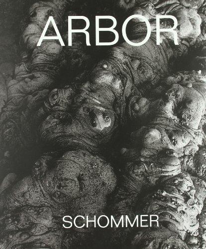 Descargar Libro Arbor Alberto Scommer