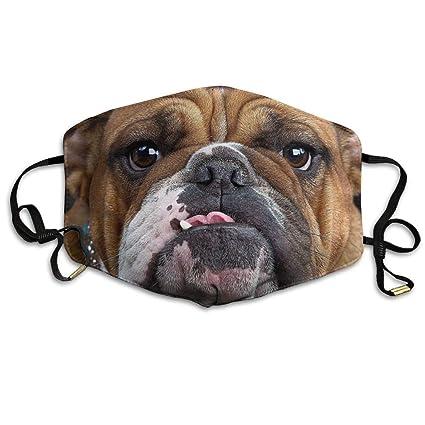 Amazon.com  Tuoneng Cool Bulldog Face Pug Dog Printed Mouth Masks ... a2db6bd156e89