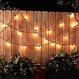 AmazonBasics Patio Lights, Black, 25