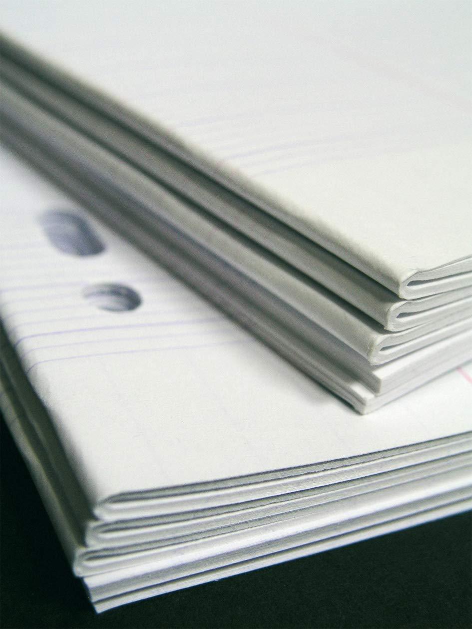 Sous /étuis carton 90g Copies doubles non perfor/ées blanche 21x29,7cm Clairefontaine 200 pages grands carreaux
