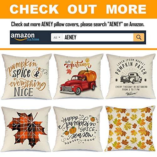 Fall Buffalo Check Plaid Pumpkin Throw Pillow Cover 18 X