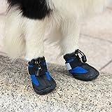 Amazon.com : Colorfulhouse DOG Australia Winter Warm Dog