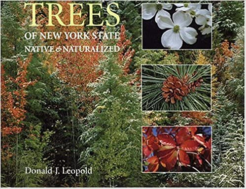 Download Trees of New York State: Native and Naturalized PDF, azw (Kindle)