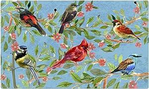 Morning View Colorful Spring Flower Bird Doormat 29 x 17 Indoor Outdoor Easy Clean Low-Profile Non Slip Door Mats Front Door Entry Garage Patio High Traffic Areas