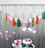 TRLYC 10Ft by 10Ft Silver Wedding Sequin Backdrop Fabric/Curtain Glitz Ceremony Background For Party