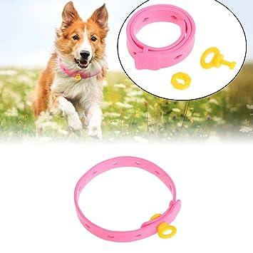 Jiamins - Correas para el cuello para perros, cachorros, gatos, gatitos, acari, antipulgas y garrapatas ajustables: Amazon.es: Productos para mascotas