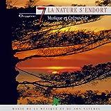 Oxygène 7 : La nature s'endort (Musique et crépuscule)