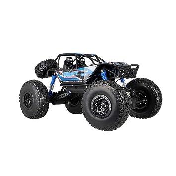 LSQR Coches RC 1:10 Escala 4WD Coche De Control Remoto De Alta Velocidad 2.4