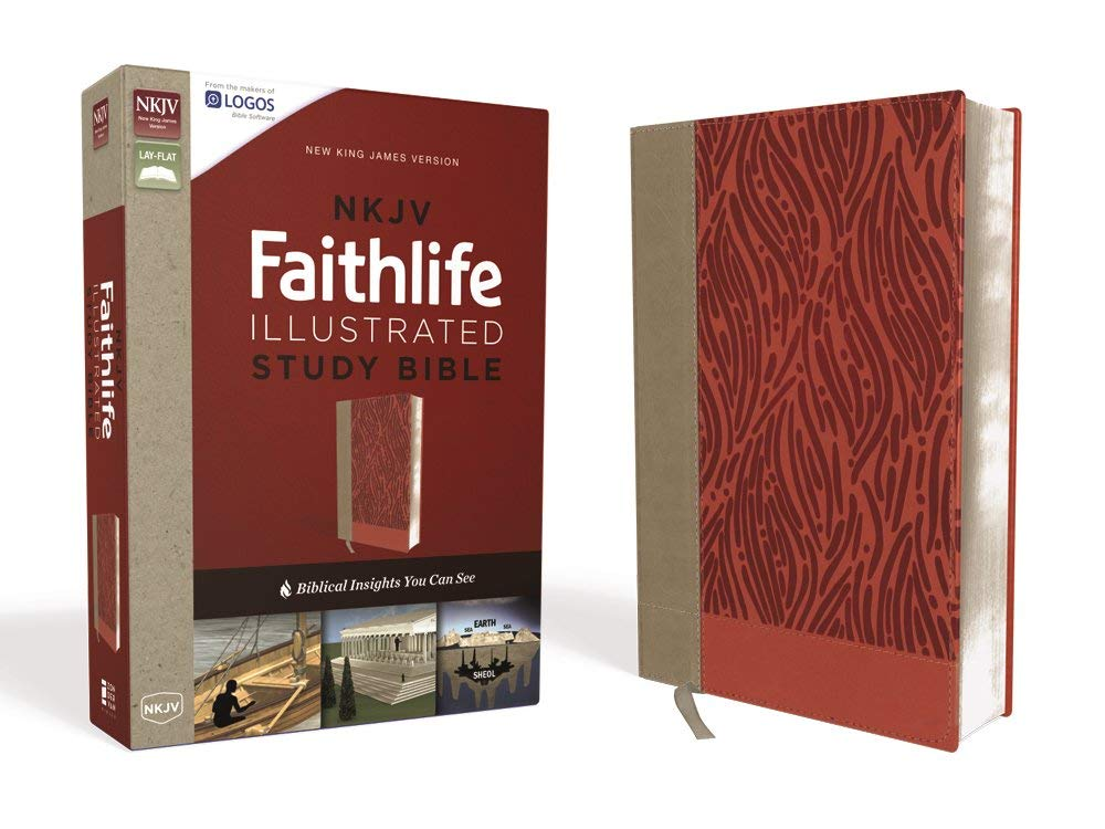 Download NKJV, Faithlife Illustrated Study Bible, Leathersoft, Pink, Indexed, Red Letter Edition: Biblical Insights You Can See pdf