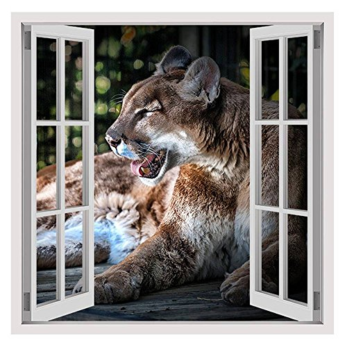 Alonline Art - Cougar by Fake 3D Window | framed stretched canvas on a ready to hang frame - 100% cotton - gallery wrapped | 28