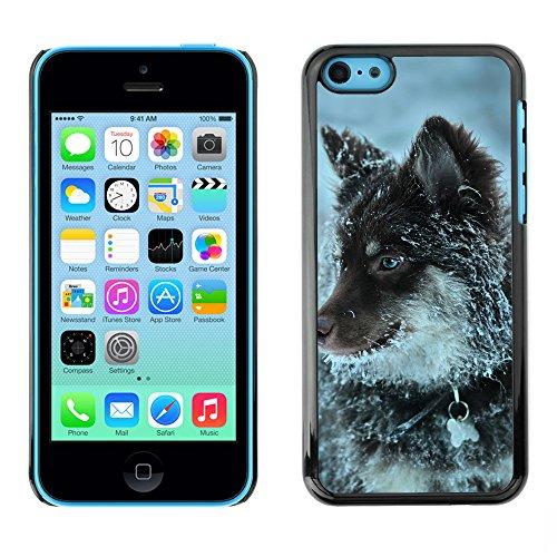 Premio Sottile Slim Cassa Custodia Case Cover Shell // F00014363 Loup // Apple iPhone 5C