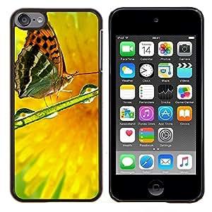 Caucho caso de Shell duro de la cubierta de accesorios de protección BY RAYDREAMMM - Apple iPod Touch 6 6th Touch6 - Planta Naturaleza Forrest Flor 82