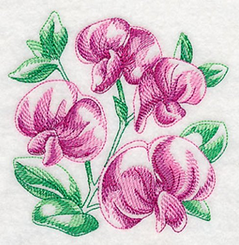 Flowers Sweet Pea Designs - Embroidered Kitchen Towel Pink Sweet Peas Design