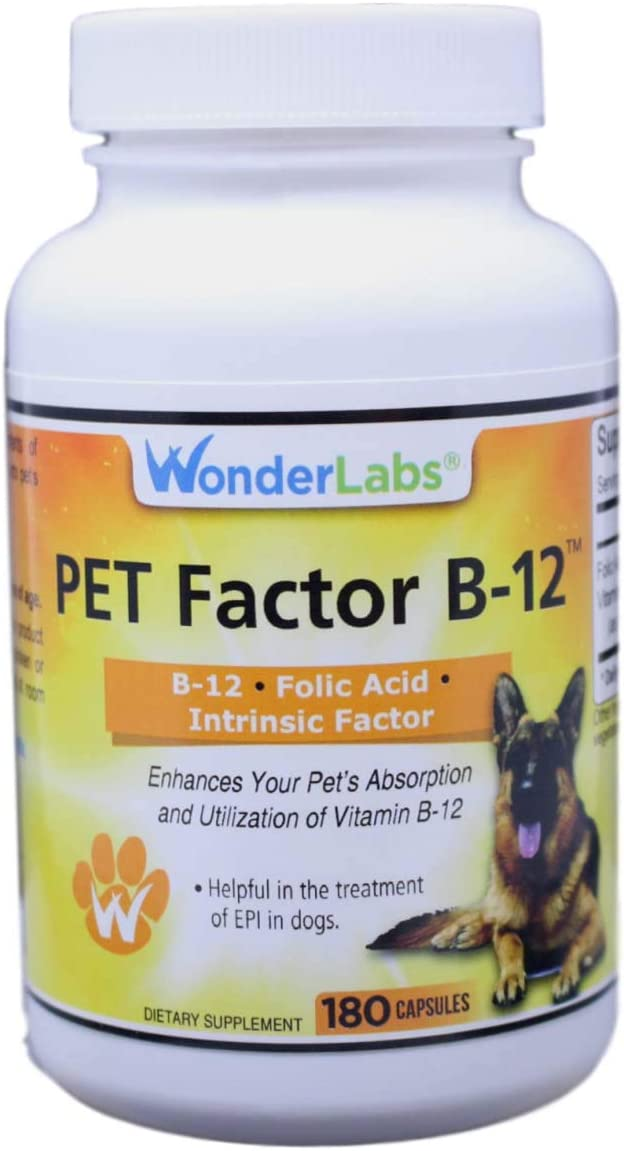 WonderLabs Pet Factor B-12 Vitamin B-12 in Methylcobalamin Form Popular in Treatment of EPI in Dogs