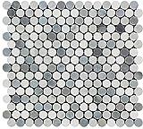 Carrara White Italian (Bianco Carrara) Marble Tricolor (Carrara + Thassos + Blue & Gray Marble) Penny Round Mosaic Tile Mosaic, Honed