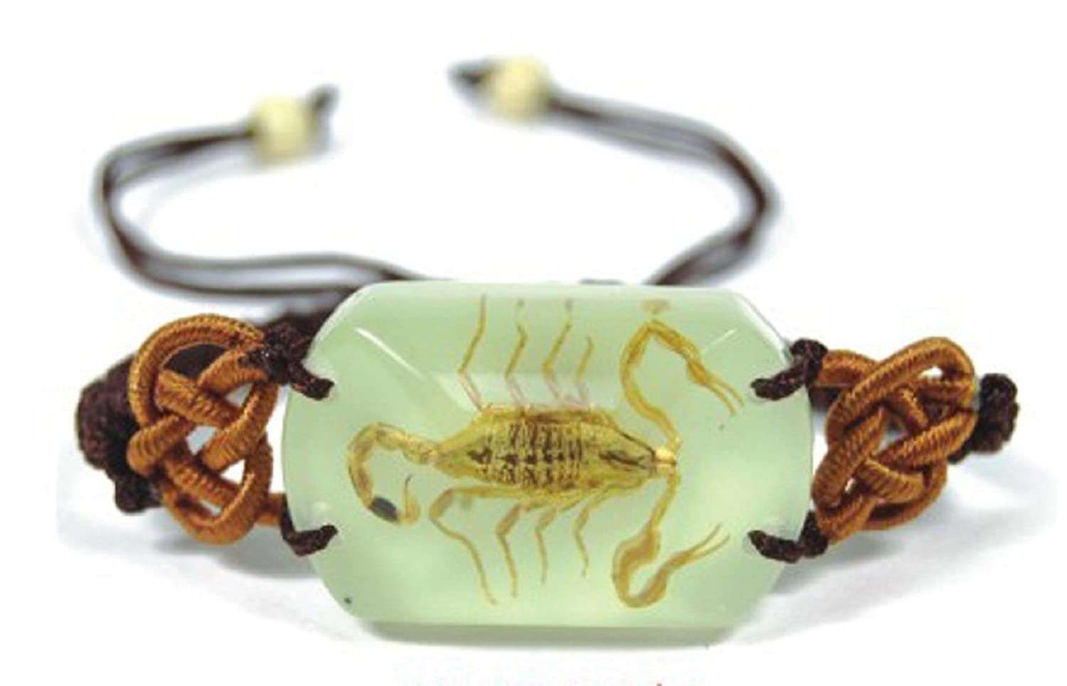 REAL GOLDEN SCORPION GLOW LUCITE BRACELET BANGLE INSECT JEWELRY TAXIDERMY GIFT