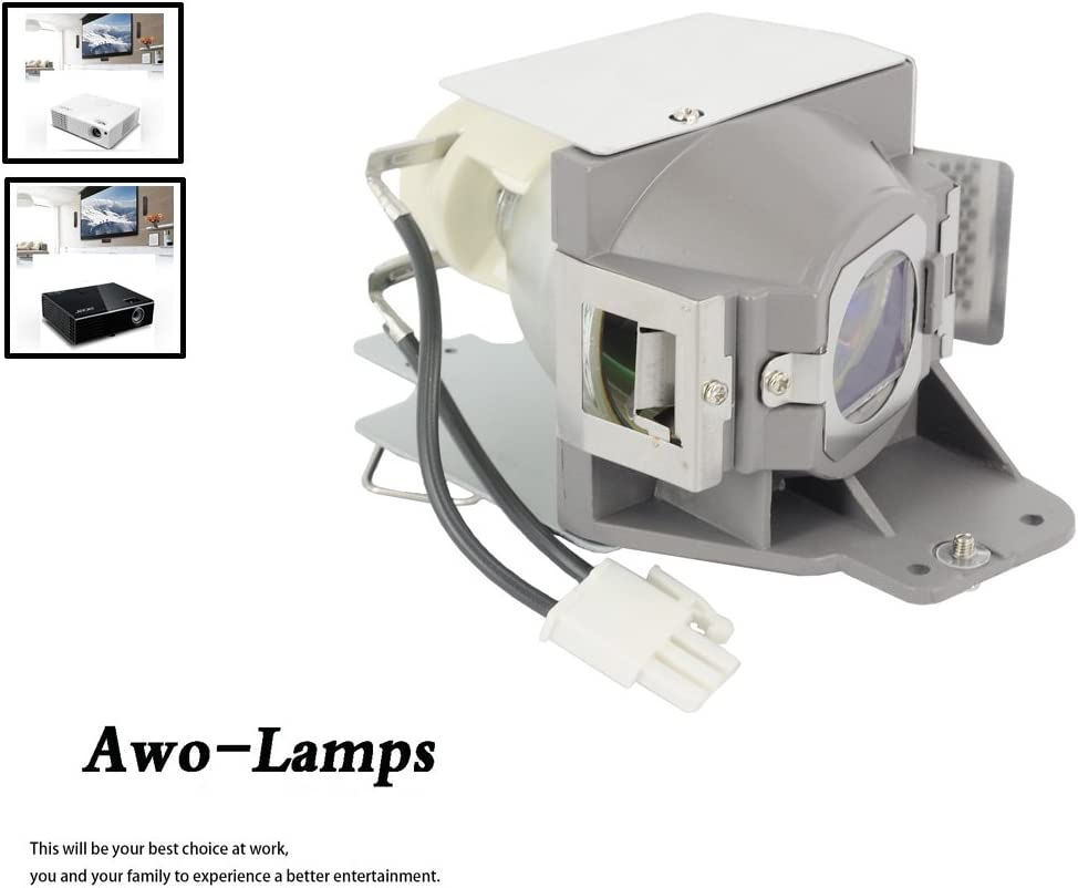 AWO MC.JFZ11.001 RLC-079 5J.JCA05.001 Premium Replacement Lamp with Housing For ACER H6510BD P1500 and For VIEWSONIC PJD7820HD PJD7822HDL and For BENQ DW843UST DX842UST MW831UST MW843UST MX842UST