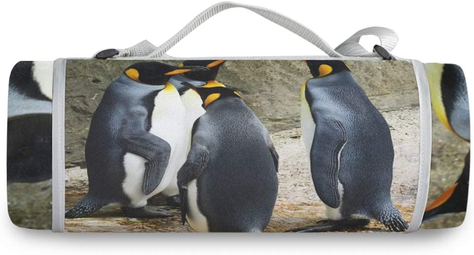 FANTAZIO Cute King Penguin Picture Picnic Blanket Outdoor Blanket Dual Layers for Outdoor Water-Resistant Handy Mat Tote Great for The Beach Camping on Grass Waterproof Sandproof