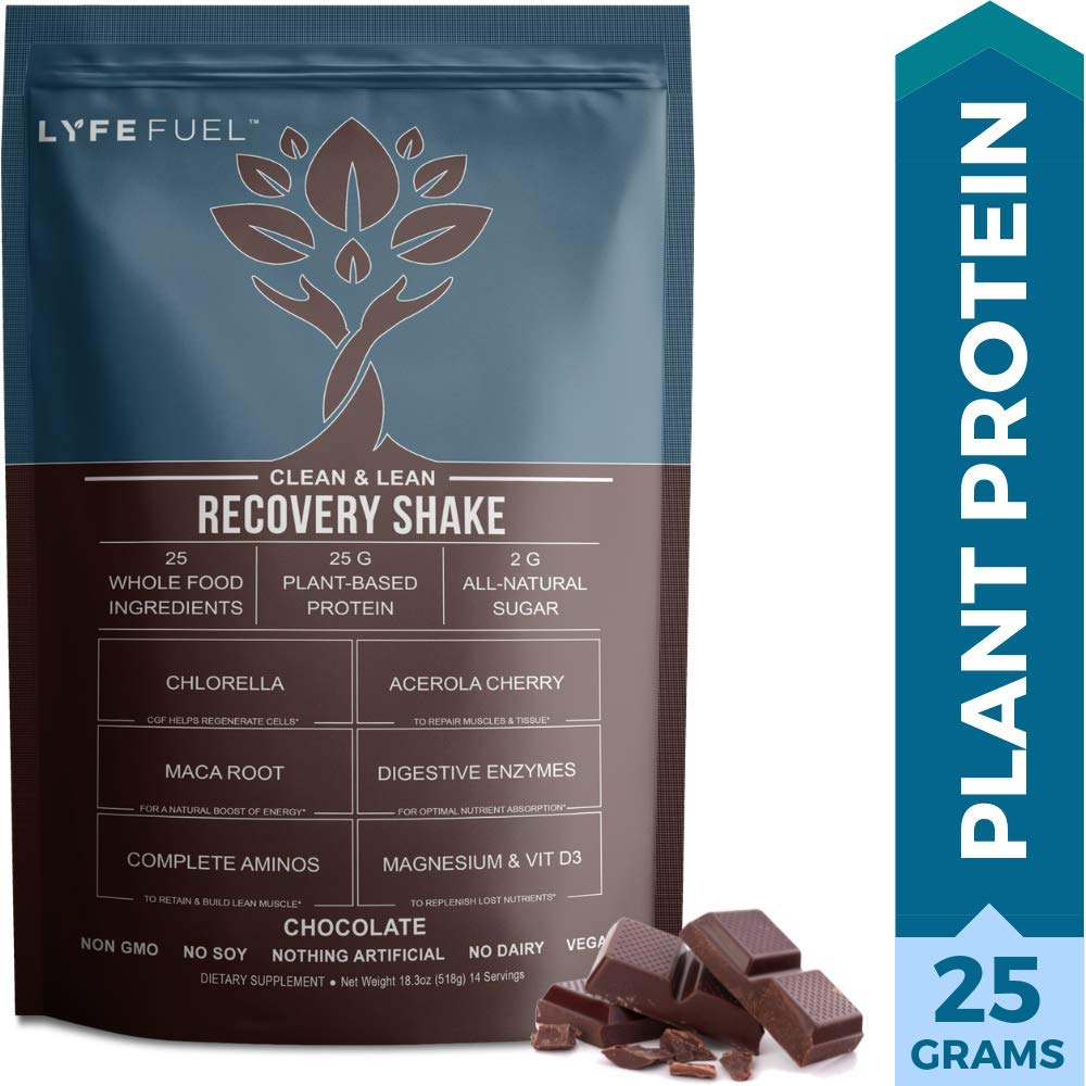 522d51106ab Plant Based Vegan Protein Powder Workout Recovery Drink by LYFE Fuel Low  Carb