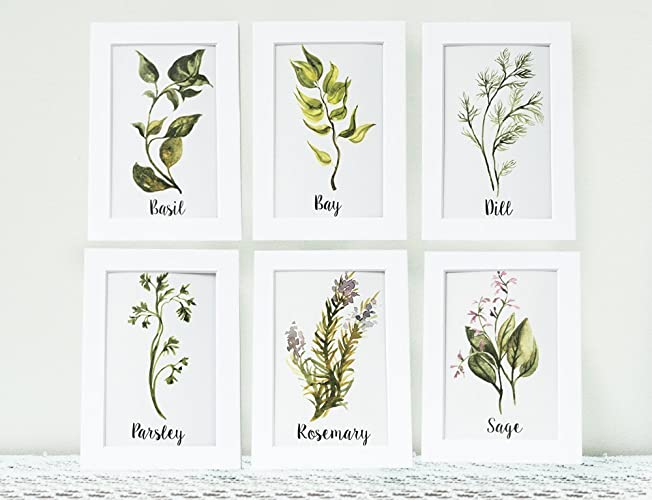 Superior Handmade Art Print Six Watercolor Herbs Kitchen Art Print Collection