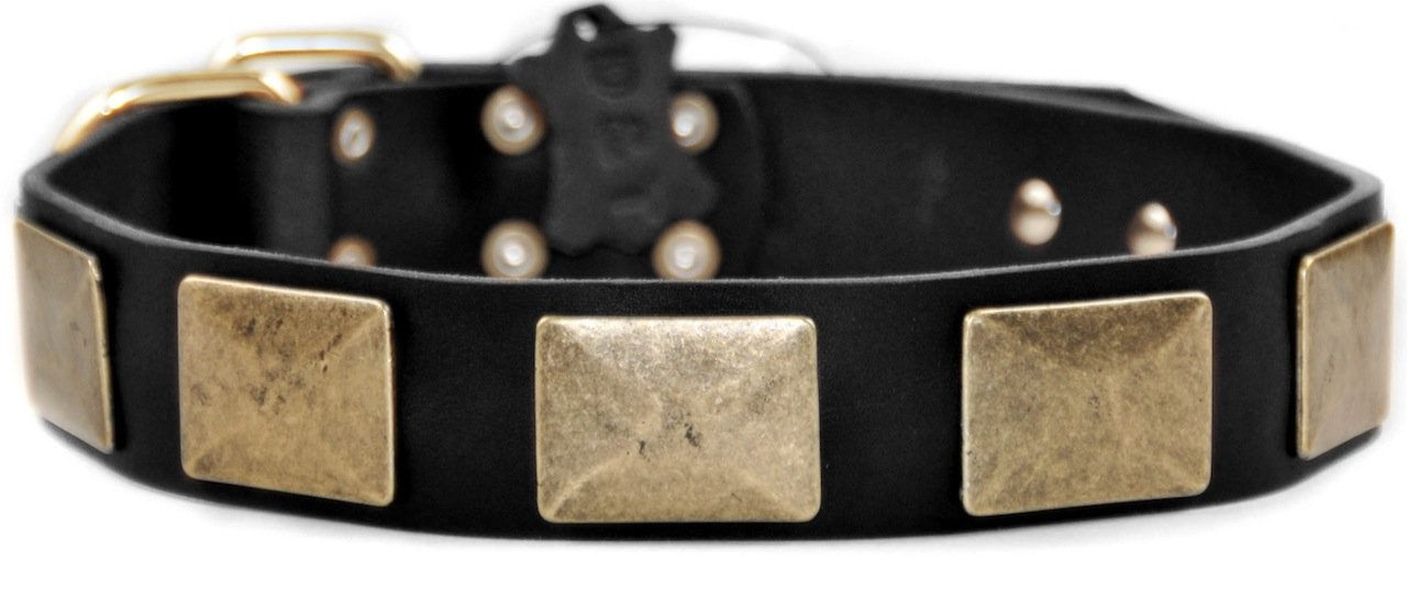 Dean & Tyler Brass Plate Dog Collar with Vintage-Style Plates and Brass Buckle, 28 by 1-1 2-Inch, Black
