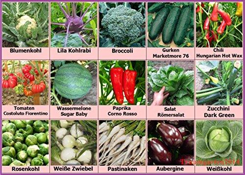 Gemüse Set 2: Broccoli Pastinaken Rosenkohl Blumenkohl Gurken Wassermelone Zucchini Weißkohl Samen Saatgut