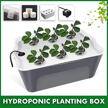 ARTFFEL Más rápido Hidroponía Caja de plantones de hortalizas sin Suelo Equipamiento for el Cultivo hidropónico hogar balcón automáticas Vegetal pla artefacto Creciente (Color : 1): Amazon.es: Hogar