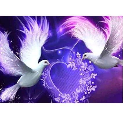 Beautiful Pigeon Painting Special Shaped Diamond Cross Stitch Crafts DIY