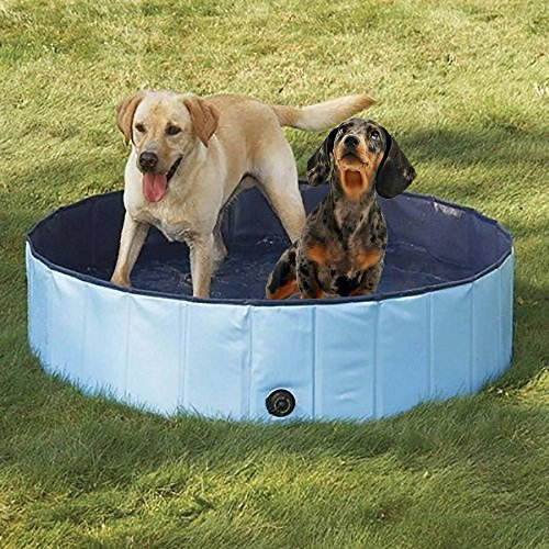Dog Bathtub, PYRUS 63 x 11.8 Inches Collapsible Pet Bath Pools Inflatable Dog Bathtub Foldable Pets Pool Bathing Tub for Dogs or Cats (XL) by PYRUS