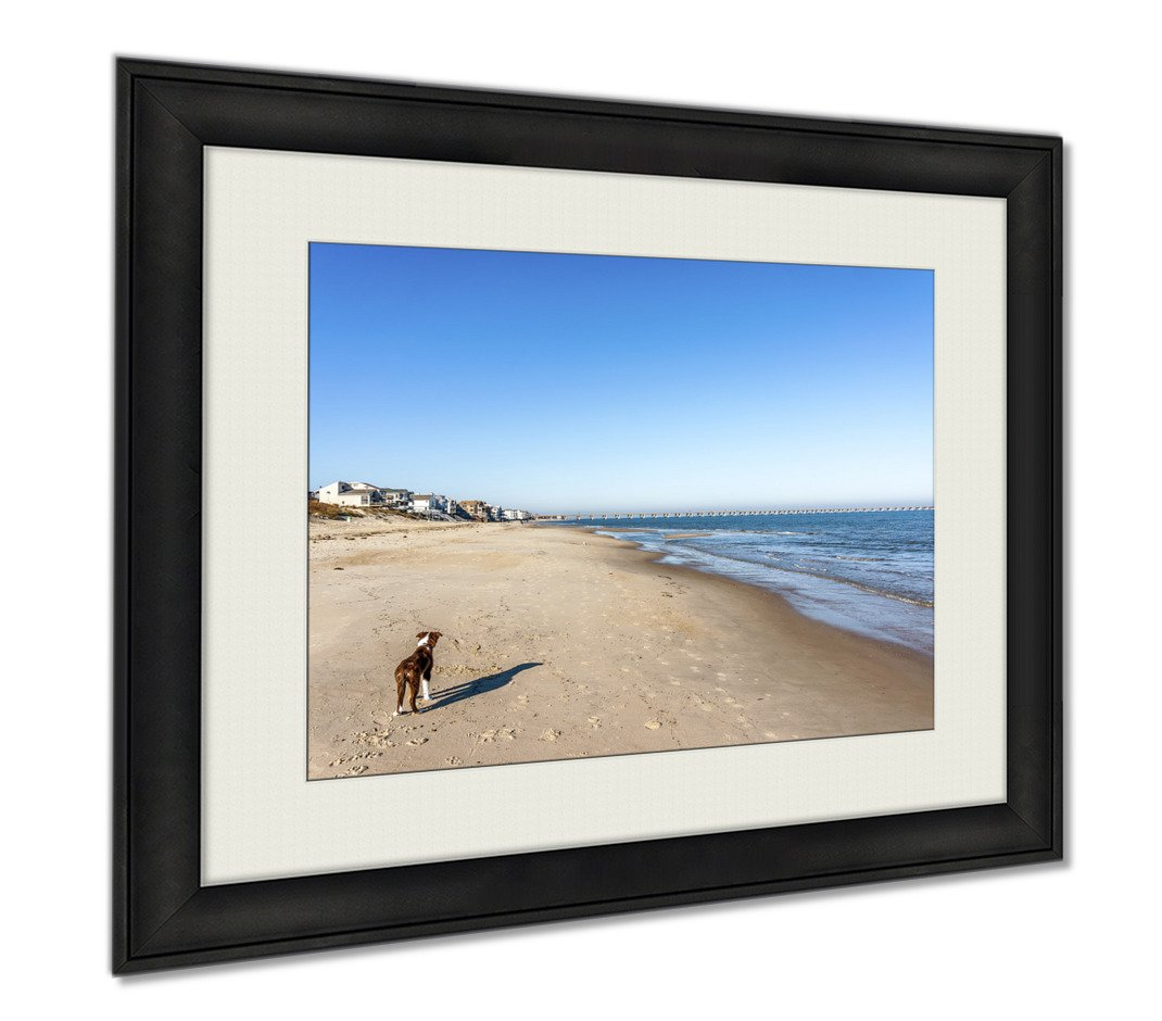 Ashley Framed Prints Bordeer Collie On Beach, Wall Art Home Decoration, Color, 26x30 (frame size), AG5655547
