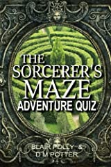 The Sorcerer's Maze (You Say Which Way Adventure Quiz) (Volume 1) Paperback