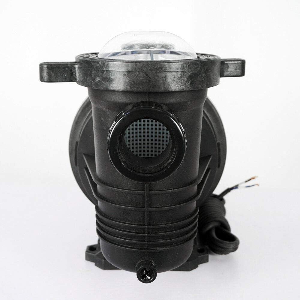 ECO-WORTHY Bomba de agua de energ/ía solar port/átil para sistema de riego de lavado de coche