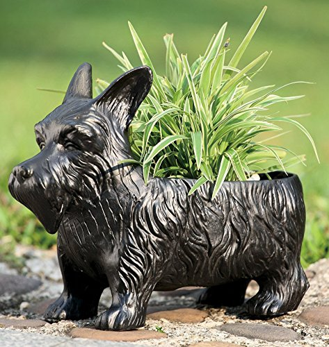 Ebros Black Scottish Terrier Dog Garden Pot Planter Statue 12.5