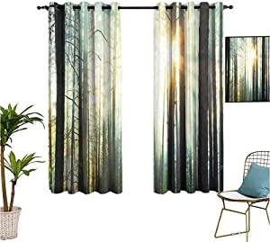 Country,Sports Curtains,Fairy Foggy Forest Mist in The Woods Enchanted Wilderness with Sunbeams Image,Isolate Sunlight Dark Curtains,63x72 Inch Teal Brown