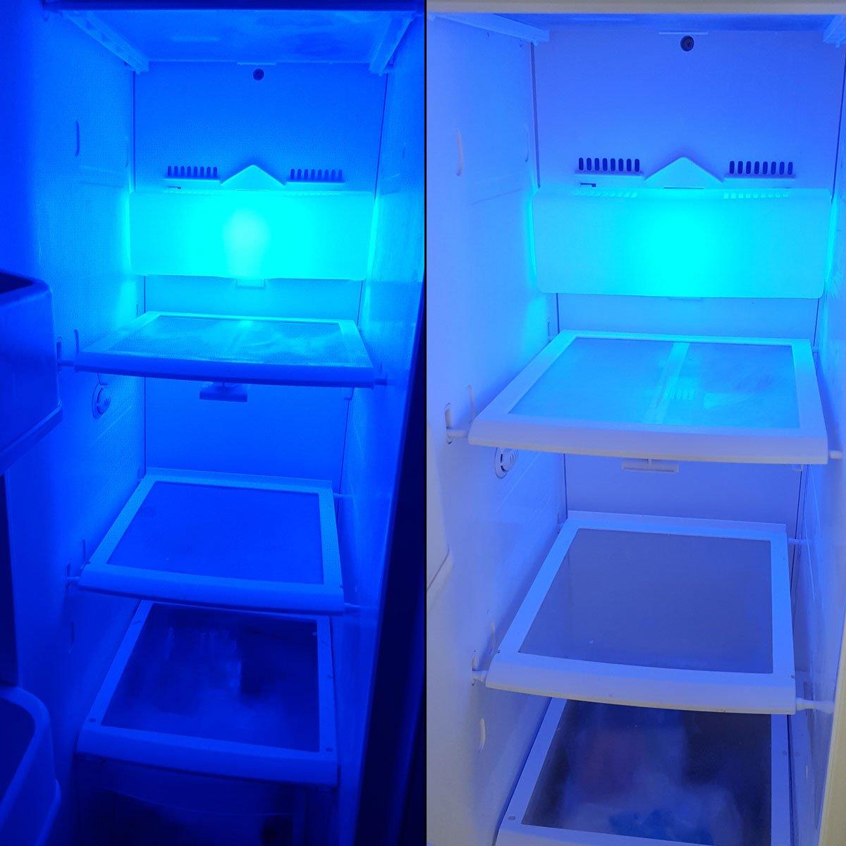 2x stk e14 led lampe 15 watt blau blaulicht fr den 2x stk e14 led lampe 15 watt blau blaulicht fr den khlschrnke lampen uvm e14ses leuchtmittel khlschrank birne glhbirne ersatz amazon parisarafo Images