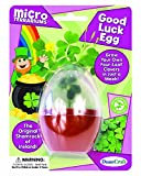 Dunecraft Good Luck Egg Science Kit (1 Pack) by DuneCraft