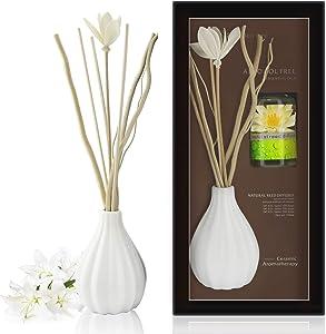 ap airpleasure Dried Flower Reed Diffuser Set, Natural Sticks, Elegant Ceramic Bottle, Aromatherapy Oil Set, Home Fragrance & Decorative Diffuser (Aqua Lily)