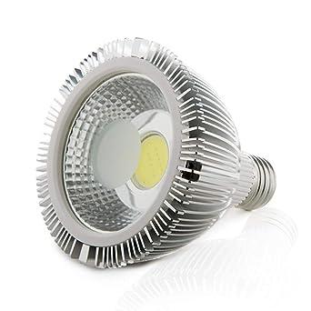 Greenice | Bombilla de LEDs COB Par 30 E27 10W 900Lm 30.000H | Blanco Frío