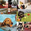 Small-Dog-Toys-Set-Ball-Rope-and-Chew-Toys-for-Small-to-Medium-Dog-Puppy-Toys