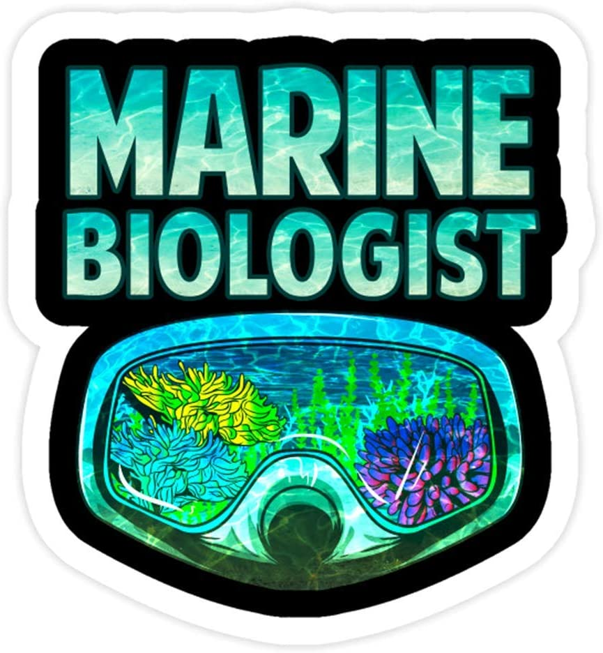 DKISEE 3 PCs Stickers Marine Biologist Underwater Biology - 4 inches Die-Cut Wall Decals for Laptop Window Car Bumper Water Bottle