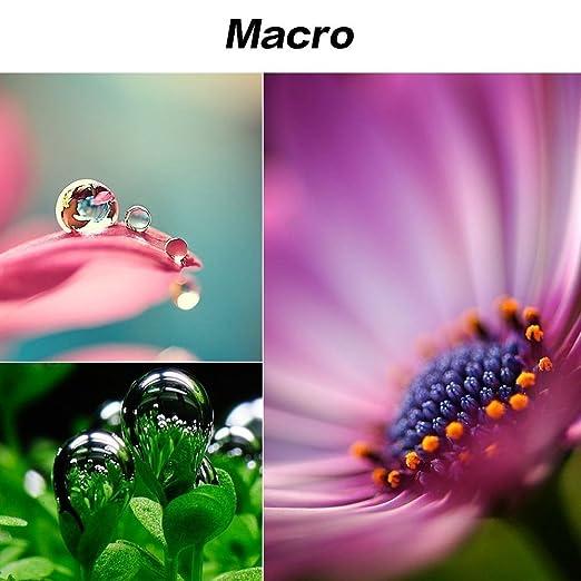 Syin téléphone Lens, 3 en 1 iPhone kit de lentille de lappareil photo Fish Eye Objectif Super Grand Angle + objectif macro + objectif pour iPhone 6 6S Plus ...
