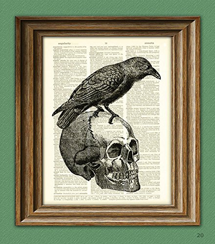(Nevermore black RAVEN on a skull bird illustration beautifully upcycled dictionary page book art print)