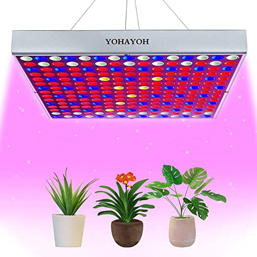 Newest YOHAYOH LED Grow Lights Grow Lamp Plant Light Panel Full Spectrum for Indoor Plants Greenhouse Seedlings Growing and Flowering and Result