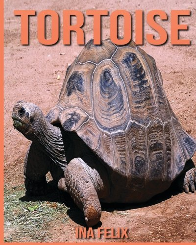 Tortoise: Children Book of Fun Facts & Amazing Photos on Animals in Nature - A Wonderful Tortoise Book for Kids aged - Kids For Tortoise