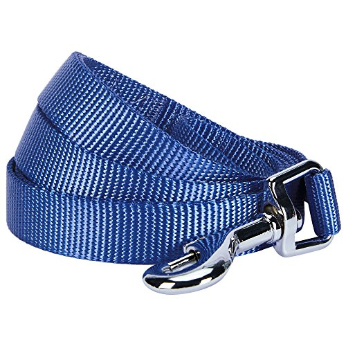 Blueberry Pet 19 Colors Durable Classic Dog Leash 5 ft x 3/8, Marina Blue, X-Small, Basic Nylon Leashes for Puppies